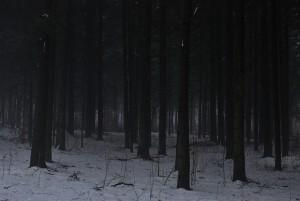 Tomkó Ádám: Sötétség